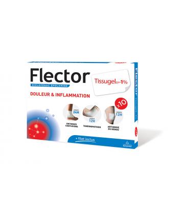 Flector Tissugel EP 1 % x 10