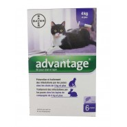 Advantage Chat et Lapin plus de 4 kg x 6