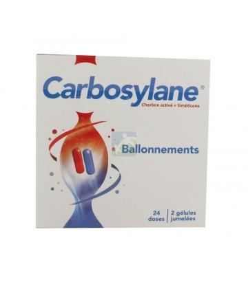 Carbosylane 2 x 24