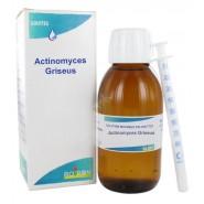 Boiron Actinomyces Griseus Gouttes 30 ml
