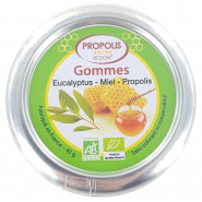 Redon Gommes Propolis Miel Eucalyptus x 24