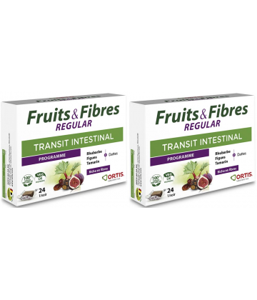 Ortis Fruits & Fibres Regular Cubes à Mâcher 2 x 24