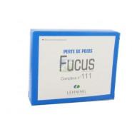 Lehning Fucus n°111 x 60