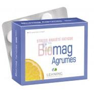 Lehning Biomag Agrumes x 90