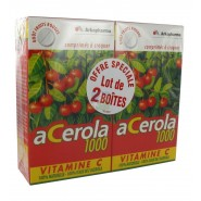 Arkopharma Acerola 1000 Vitamine C Goût Fruits Rouges 2 x 30